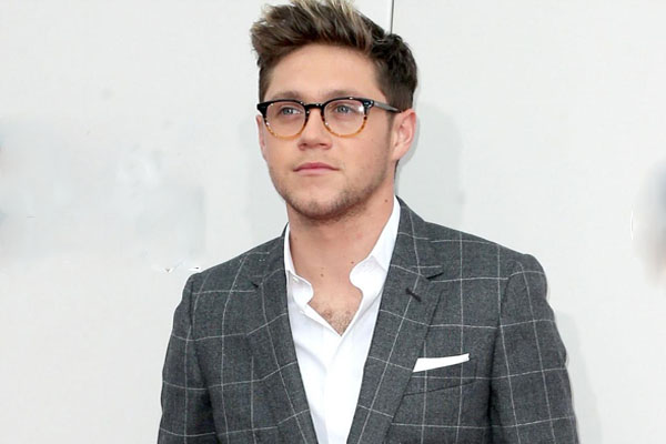 Niall Horan on One Direction: We will reunite